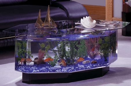 akvarium-stul
