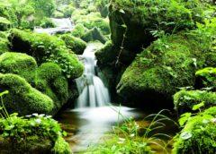 příroda voda