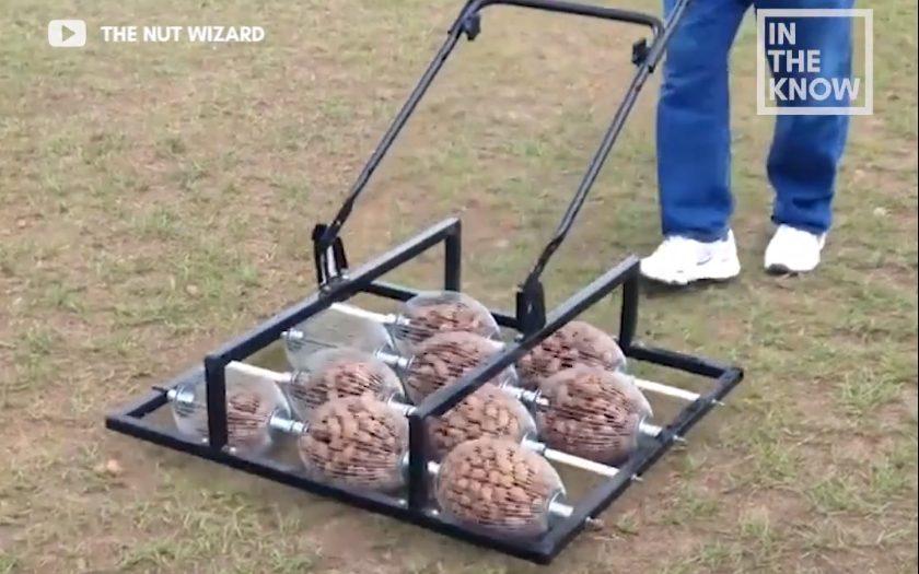 Nut Wizard