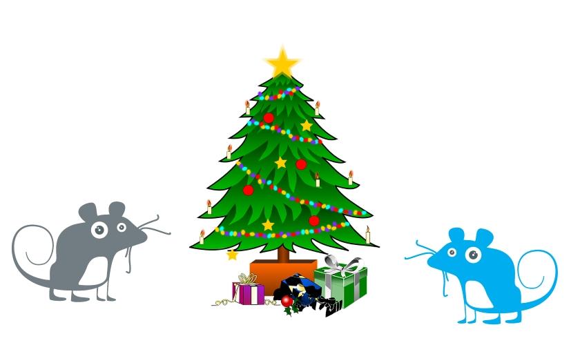KANKRY Vánoce