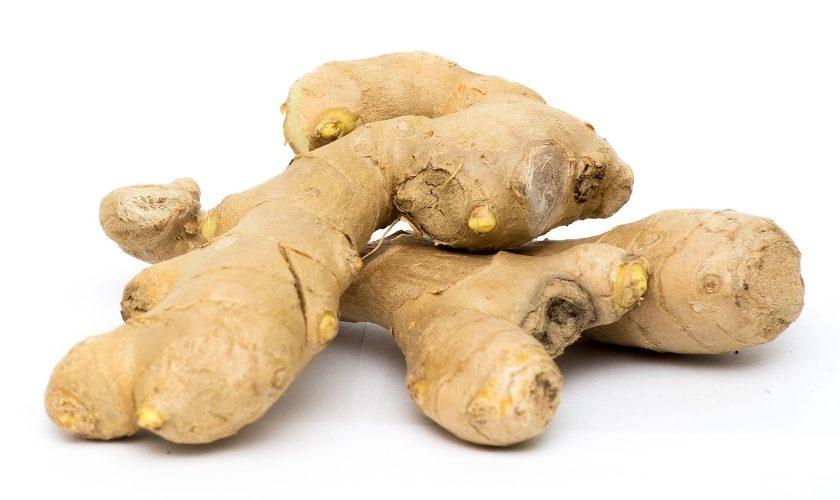 ginger zázvor